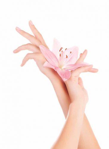 Beaute Des Mains